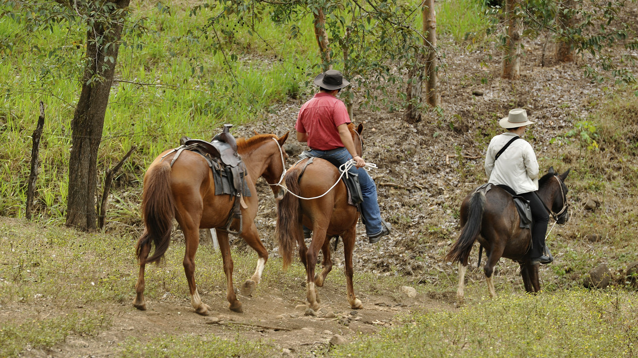 Explorer-ride in costa rica